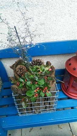Minigabione-dekorativ-auf-der-Gartenbank592fe4135ac96