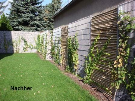 Wand-nachher-Gabionen24-de59a54d26e8fcf